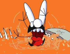 Les aventures d'une mouche