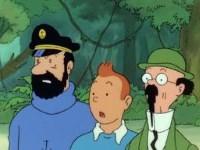Tintin et les Picaros (2)