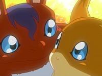 Les bébés Digimon