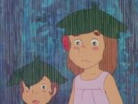 La pluie fait des heureux
