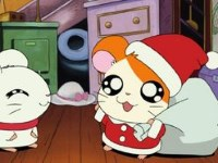 Le Noël de Ham-Ham