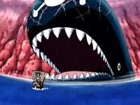 Luffy et la baleine ! La promesse d'une future rencontre