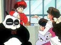 Le petit garçon et le panda