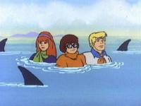 Le secret de l'île aux requins