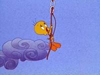 L'oiseau d'or de Shangri Griffe