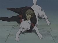 Les loups déchus
