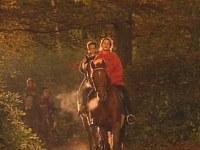Le voleur de chevaux